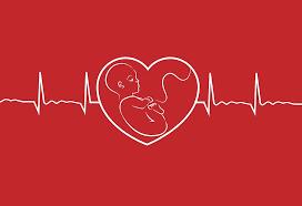 ضربان قلب جنین