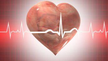 آریتمی قلب جنین